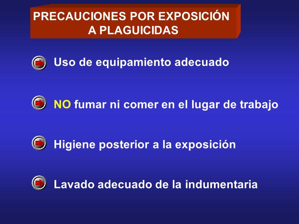 PRECAUCIONES POR EXPOSICIÓN A PLAGUICIDAS Uso de equipamiento adecuado NO fumar ni comer en el lugar de trabajo Higiene posterior a la exposición Lava