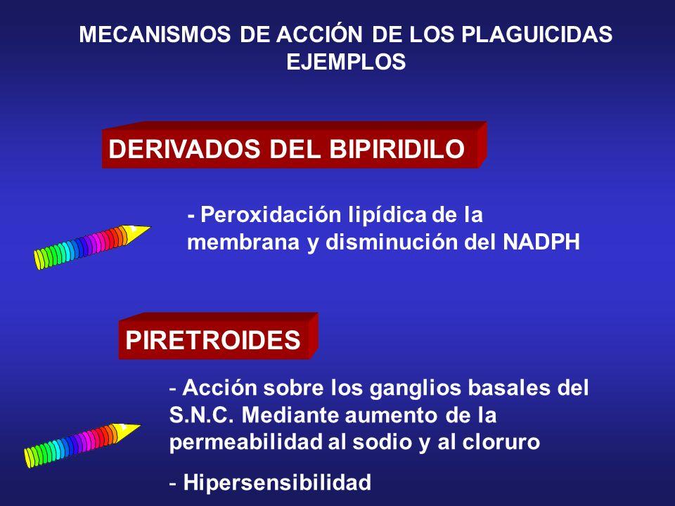 DERIVADOS DEL BIPIRIDILO PIRETROIDES - Acción sobre los ganglios basales del S.N.C. Mediante aumento de la permeabilidad al sodio y al cloruro - Hiper