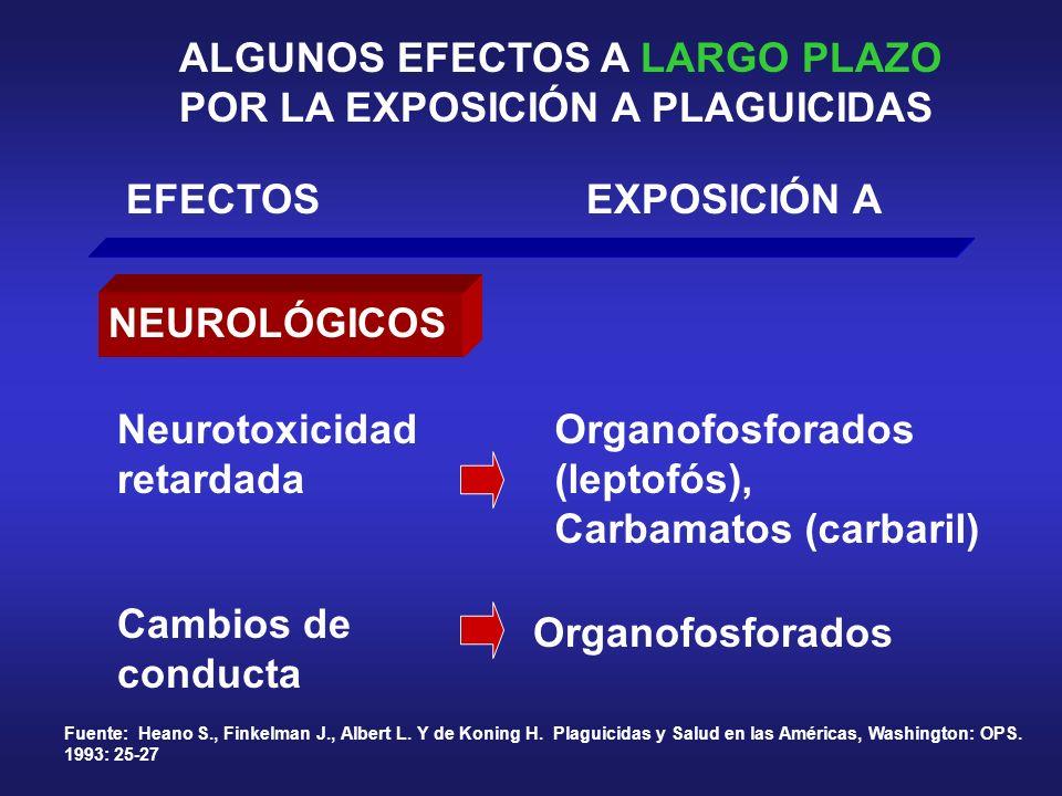 ALGUNOS EFECTOS A LARGO PLAZO POR LA EXPOSICIÓN A PLAGUICIDAS EFECTOSEXPOSICIÓN A NEUROLÓGICOS Neurotoxicidad retardada Cambios de conducta Organofosf