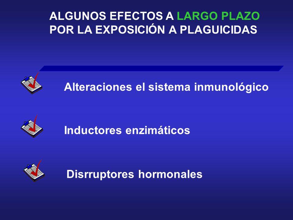ALGUNOS EFECTOS A LARGO PLAZO POR LA EXPOSICIÓN A PLAGUICIDAS Alteraciones el sistema inmunológico Inductores enzimáticos Disrruptores hormonales