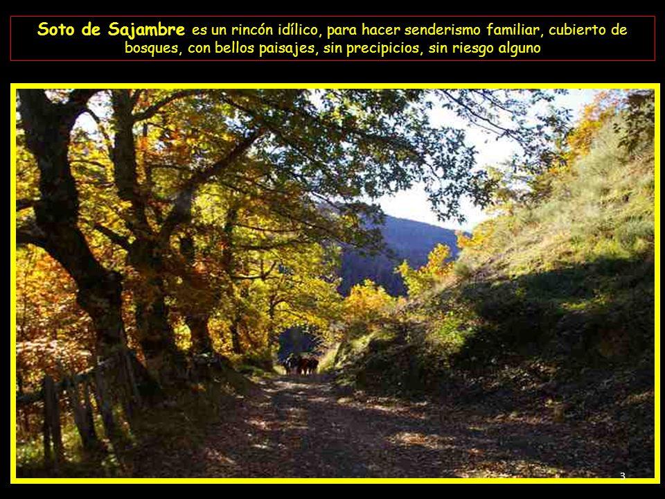 Soto de Sajambre está situado en el Parque Nacional de los Picos de Europa en su macizo occidental; entre majestuosos bosques y flanqueado por grandio