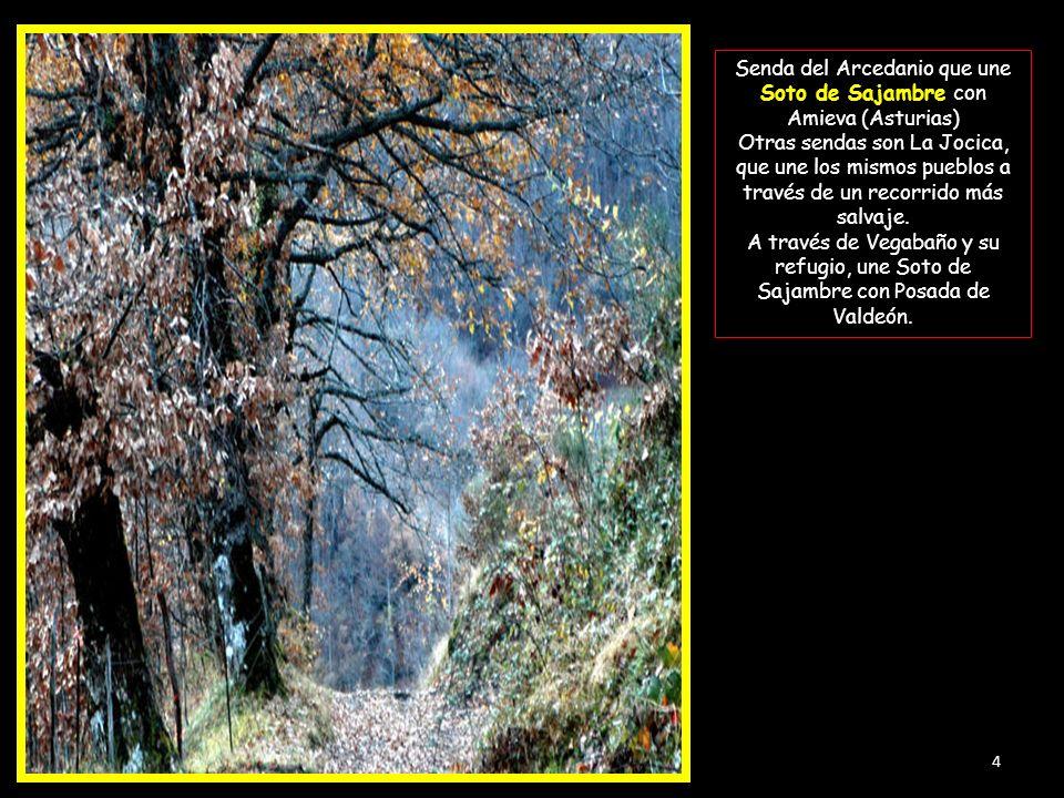 Senda del Arcedanio que une Soto de Sajambre con Amieva (Asturias) Otras sendas son La Jocica, que une los mismos pueblos a través de un recorrido más salvaje.