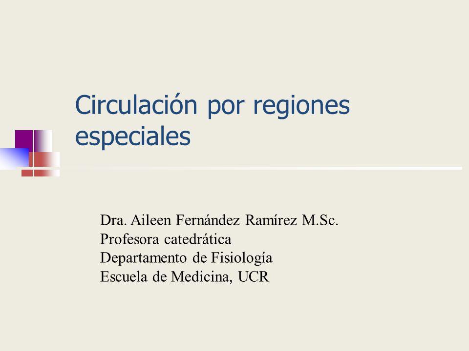 Circulación por regiones especiales Dra. Aileen Fernández Ramírez M.Sc. Profesora catedrática Departamento de Fisiología Escuela de Medicina, UCR