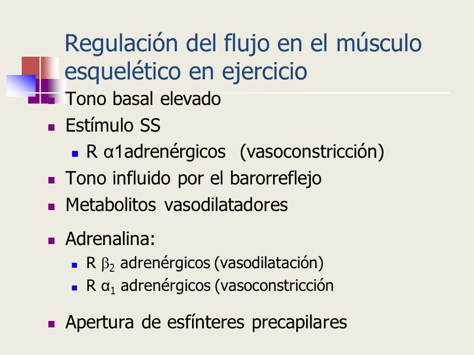 Regulación del flujo en el músculo esquelético en ejercicio Tono basal elevado Estímulo SS R α1 adrenérgicos (vasoconstricción) Tono influido por el b