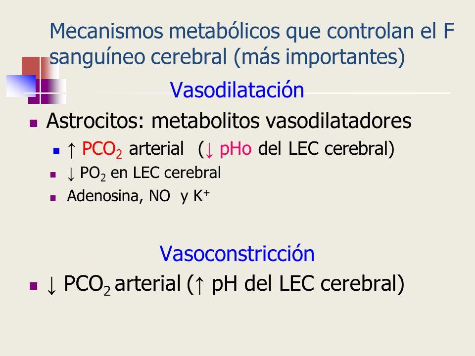 Mecanismos metabólicos que controlan el F sanguíneo cerebral (más importantes) Vasodilatación Astrocitos: metabolitos vasodilatadores PCO 2 arterial (