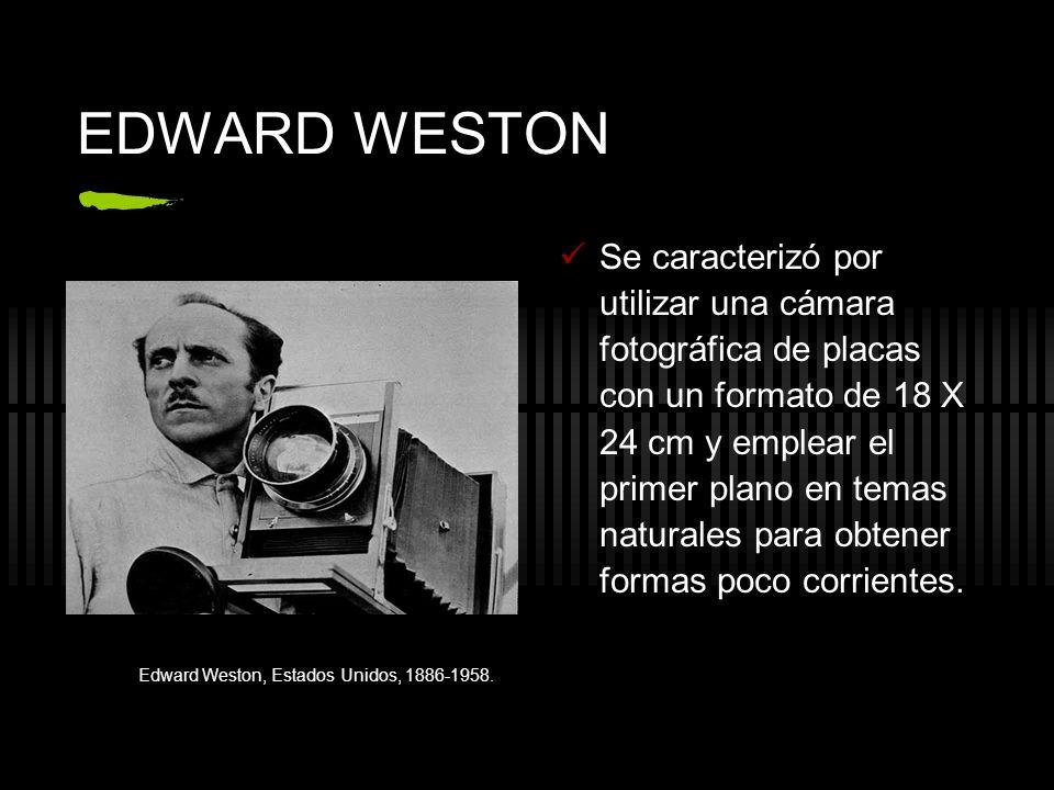 EDWARD WESTON Se caracterizó por utilizar una cámara fotográfica de placas con un formato de 18 X 24 cm y emplear el primer plano en temas naturales p