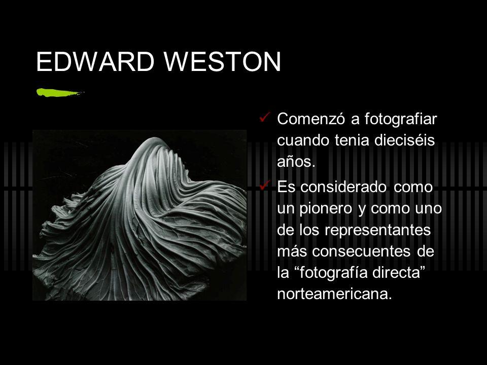 EDWARD WESTON Comenzó a fotografiar cuando tenia dieciséis años. Es considerado como un pionero y como uno de los representantes más consecuentes de l