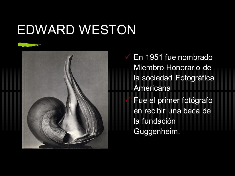 EDWARD WESTON En 1951 fue nombrado Miembro Honorario de la sociedad Fotográfica Americana Fue el primer fotógrafo en recibir una beca de la fundación