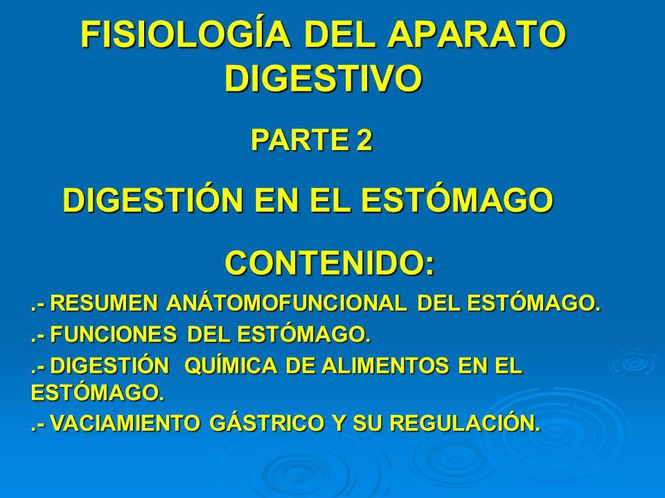 FISIOLOGÍA DEL APARATO DIGESTIVO PARTE 2 DIGESTIÓN EN EL ESTÓMAGO CONTENIDO:.- RESUMEN ANÁTOMOFUNCIONAL DEL ESTÓMAGO..- FUNCIONES DEL ESTÓMAGO..- DIGE