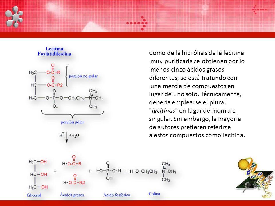 Como de la hidrólisis de la lecitina muy purificada se obtienen por lo menos cinco ácidos grasos diferentes, se está tratando con una mezcla de compue