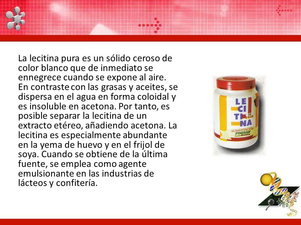 La lecitina pura es un sólido ceroso de color blanco que de inmediato se ennegrece cuando se expone al aire. En contraste con las grasas y aceites, se