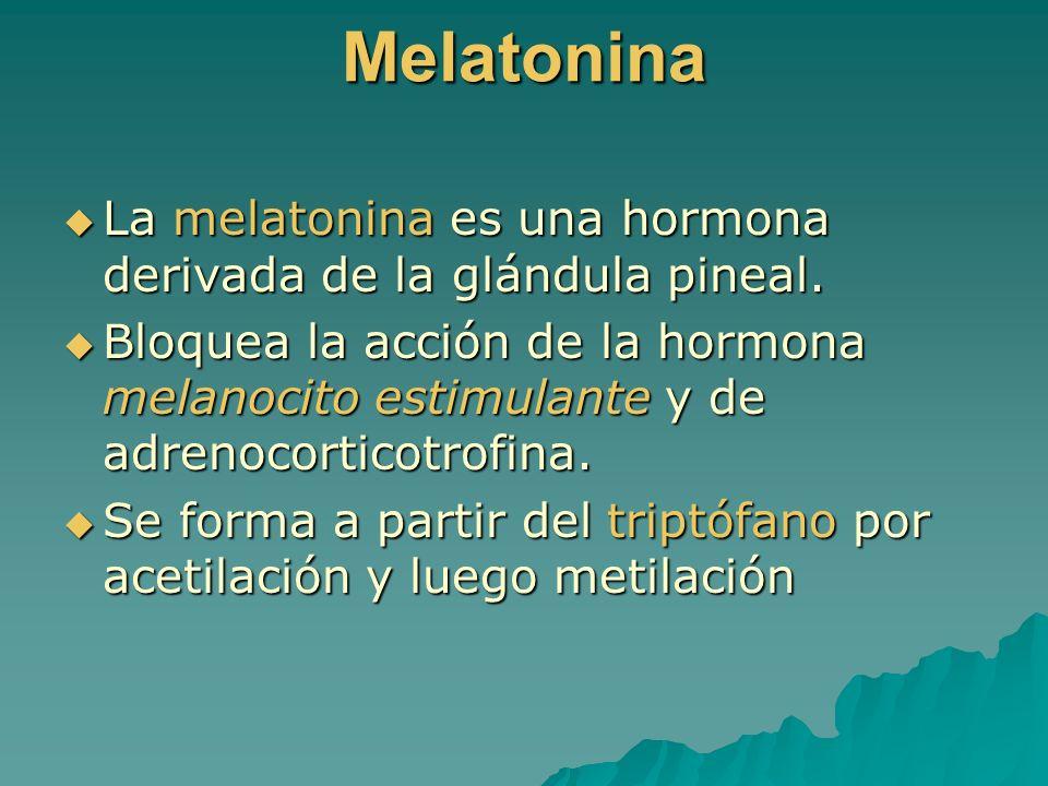 Melatonina La melatonina es una hormona derivada de la glándula pineal. La melatonina es una hormona derivada de la glándula pineal. Bloquea la acción