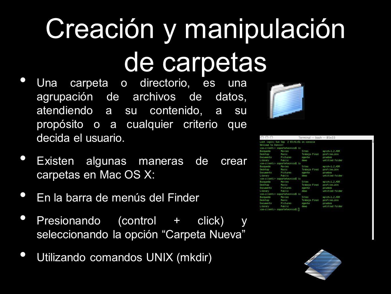 Creación y manipulación de carpetas Una carpeta o directorio, es una agrupación de archivos de datos, atendiendo a su contenido, a su propósito o a cu