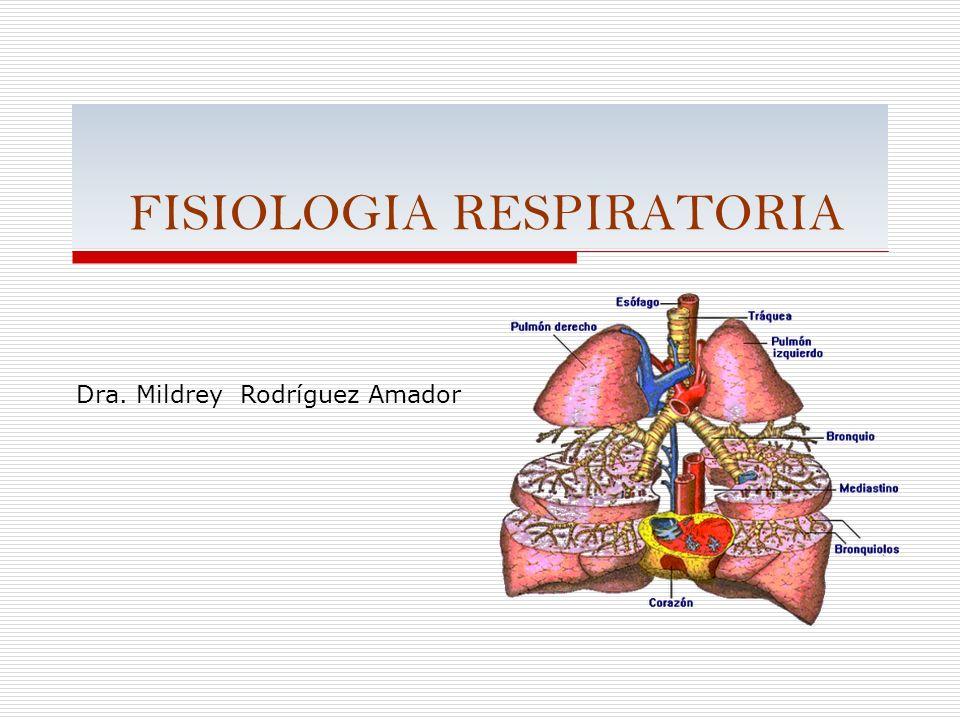 FISIOLOGIA RESPIRATORIA Dra. Mildrey Rodríguez Amador