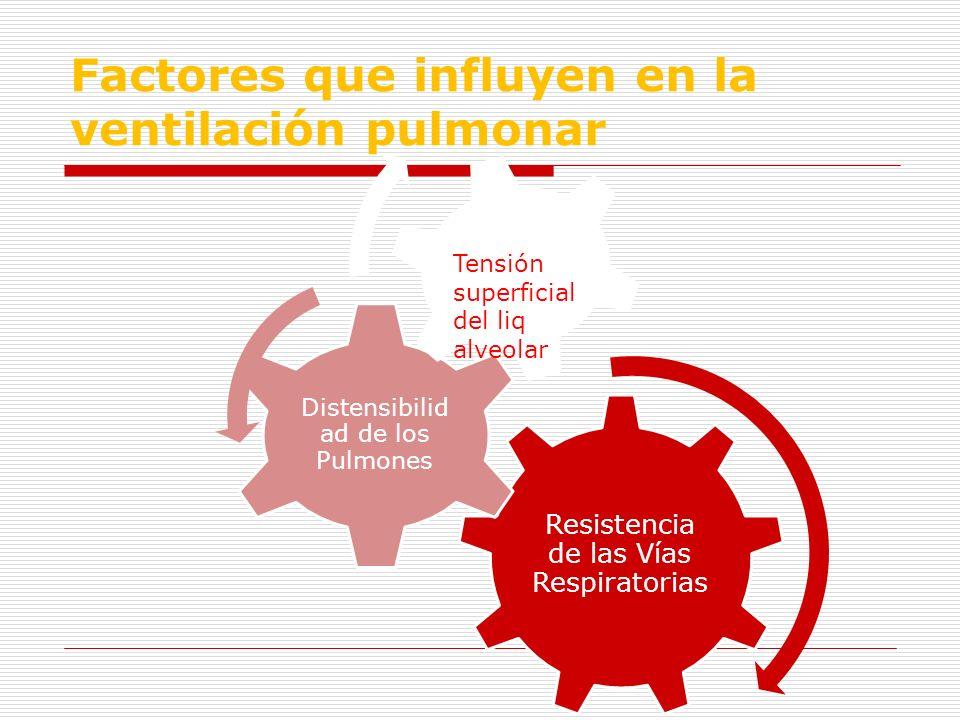 Factores que influyen en la ventilación pulmonar Resistencia de las Vías Respiratorias Distensibilid ad de los Pulmones Tensión alveolar Tensión super
