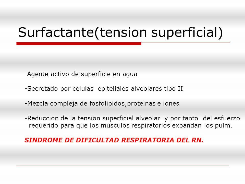 Surfactante(tension superficial) -Agente activo de superficie en agua -Secretado por células epiteliales alveolares tipo II -Mezcla compleja de fosfol