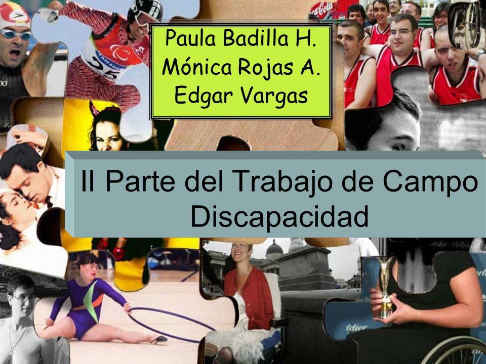 II Parte del Trabajo de Campo Discapacidad Paula Badilla H. Mónica Rojas A. Edgar Vargas Paula Badilla H. Mónica Rojas A. Edgar Vargas