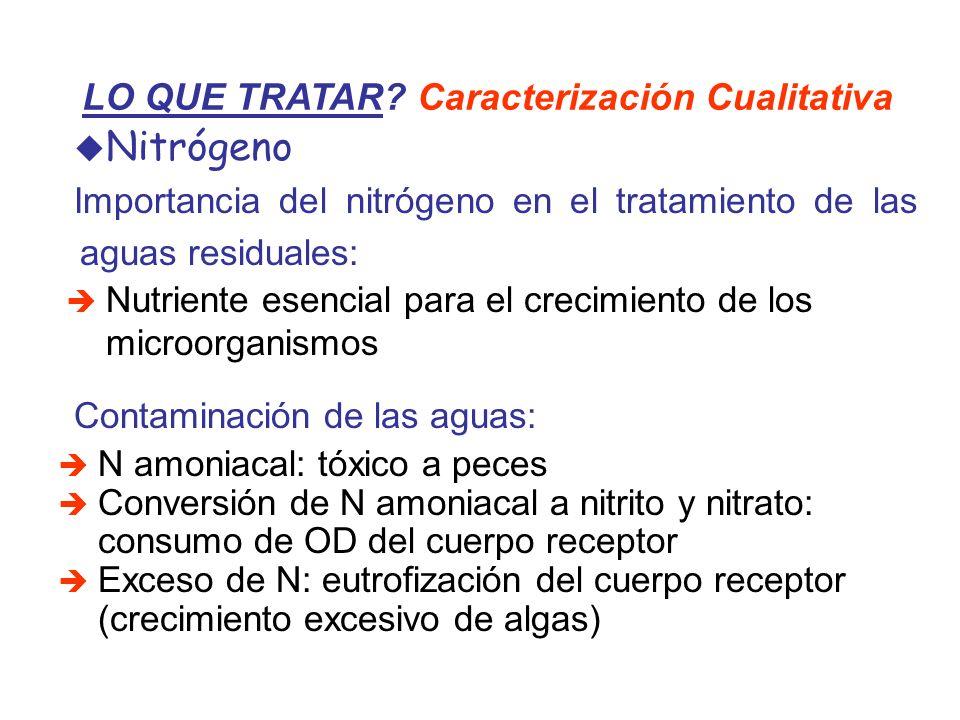 LO QUE TRATAR? Caracterización Cualitativa Nitrógeno Importancia del nitrógeno en el tratamiento de las aguas residuales: Nutriente esencial para el c