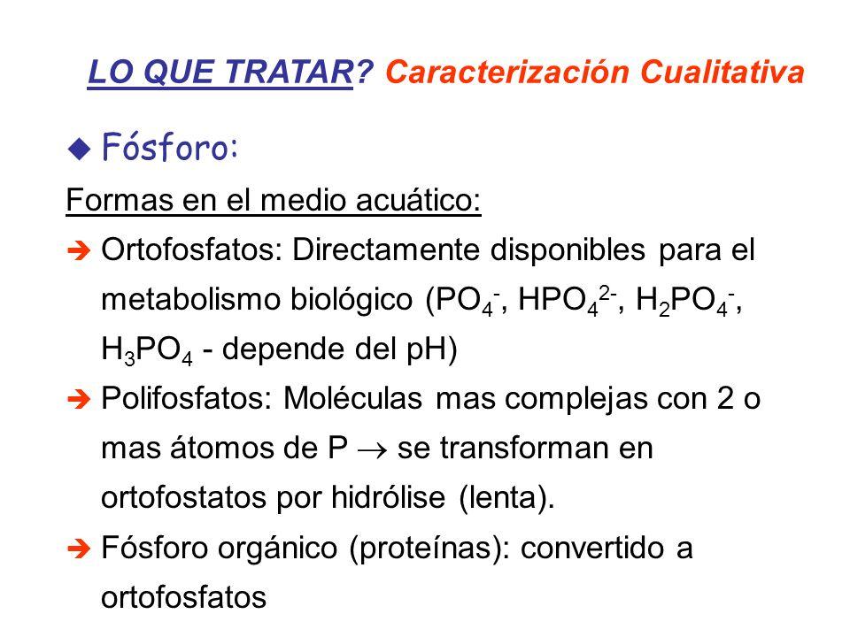 Fósforo: Formas en el medio acuático: Ortofosfatos: Directamente disponibles para el metabolismo biológico (PO 4 -, HPO 4 2-, H 2 PO 4 -, H 3 PO 4 - d