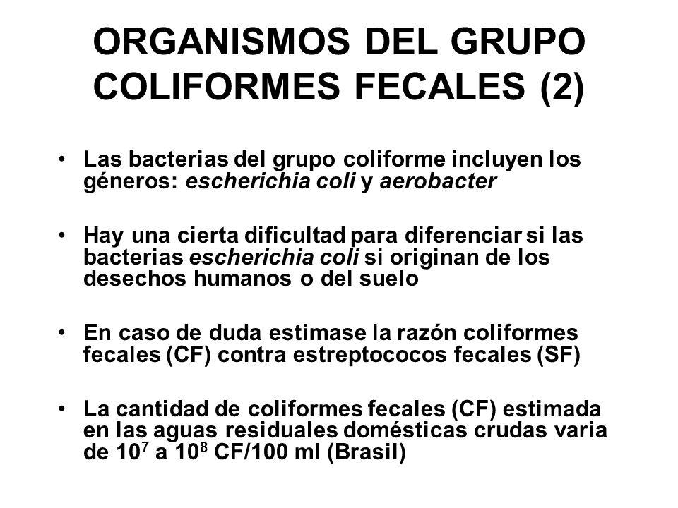 ORGANISMOS DEL GRUPO COLIFORMES FECALES (2) Las bacterias del grupo coliforme incluyen los géneros: escherichia coli y aerobacter Hay una cierta dific