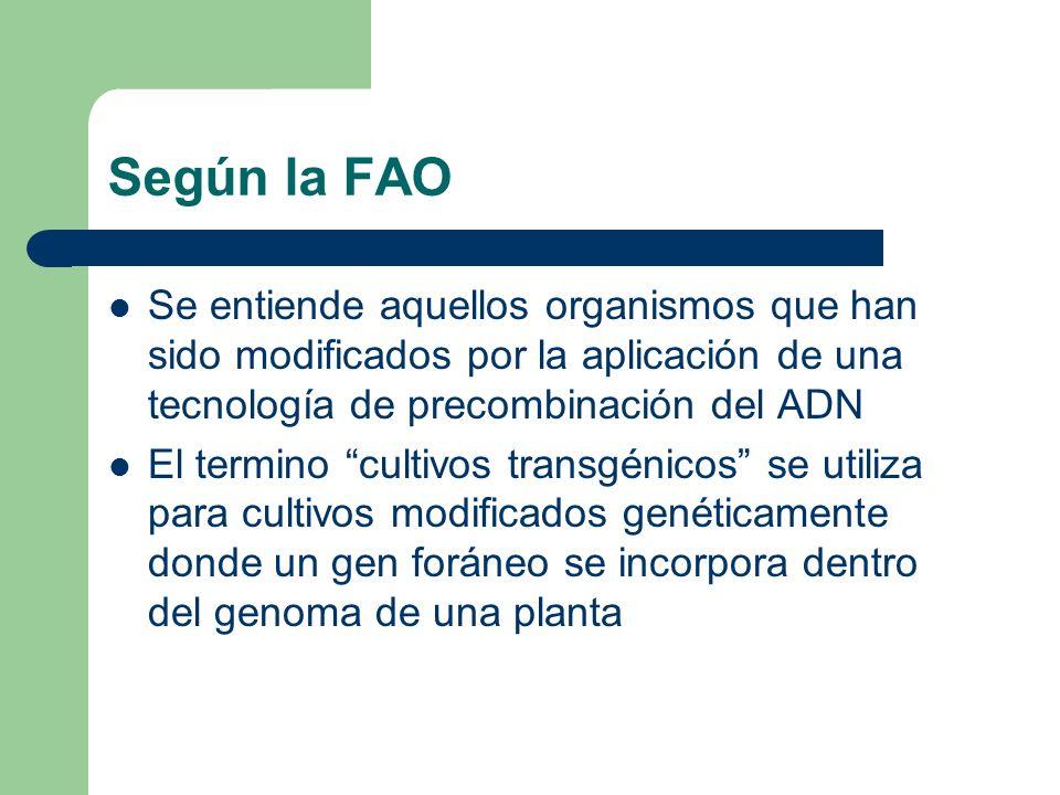 Según la FAO Se entiende aquellos organismos que han sido modificados por la aplicación de una tecnología de precombinación del ADN El termino cultivo