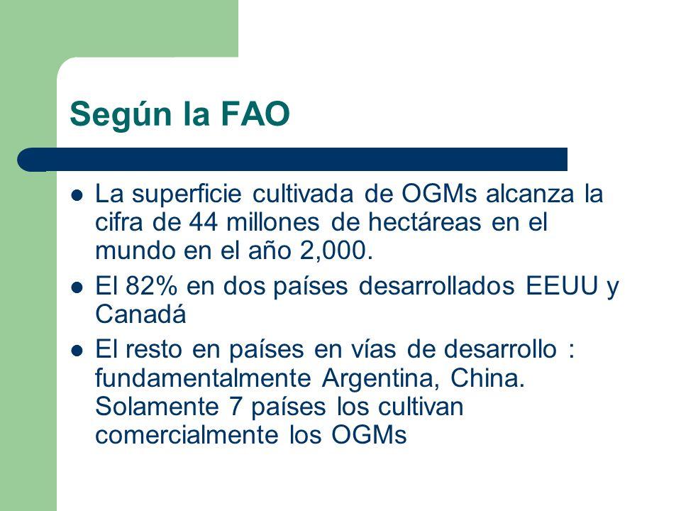 Según la FAO La superficie cultivada de OGMs alcanza la cifra de 44 millones de hectáreas en el mundo en el año 2,000. El 82% en dos países desarrolla