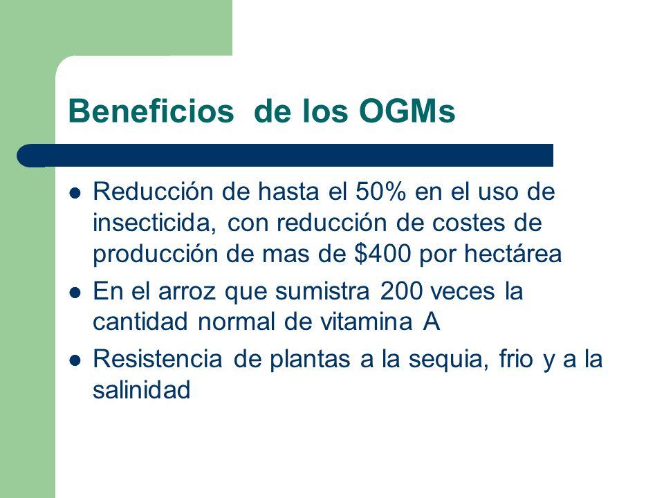 Beneficios de los OGMs Reducción de hasta el 50% en el uso de insecticida, con reducción de costes de producción de mas de $400 por hectárea En el arr