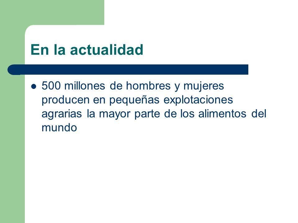 En la actualidad 500 millones de hombres y mujeres producen en pequeñas explotaciones agrarias la mayor parte de los alimentos del mundo