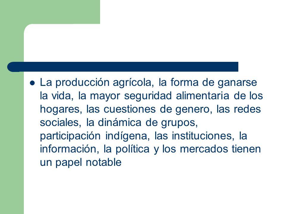 La producción agrícola, la forma de ganarse la vida, la mayor seguridad alimentaria de los hogares, las cuestiones de genero, las redes sociales, la d