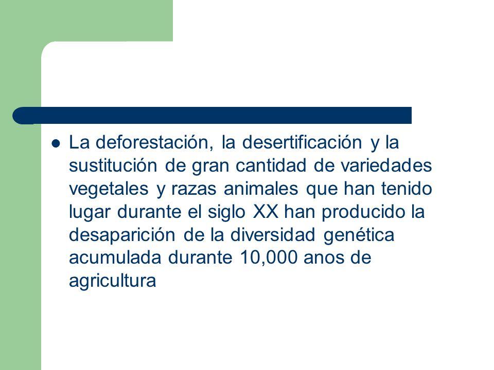 La deforestación, la desertificación y la sustitución de gran cantidad de variedades vegetales y razas animales que han tenido lugar durante el siglo