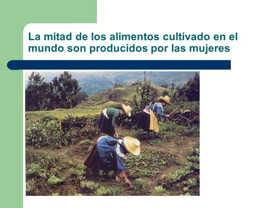 La mitad de los alimentos cultivado en el mundo son producidos por las mujeres
