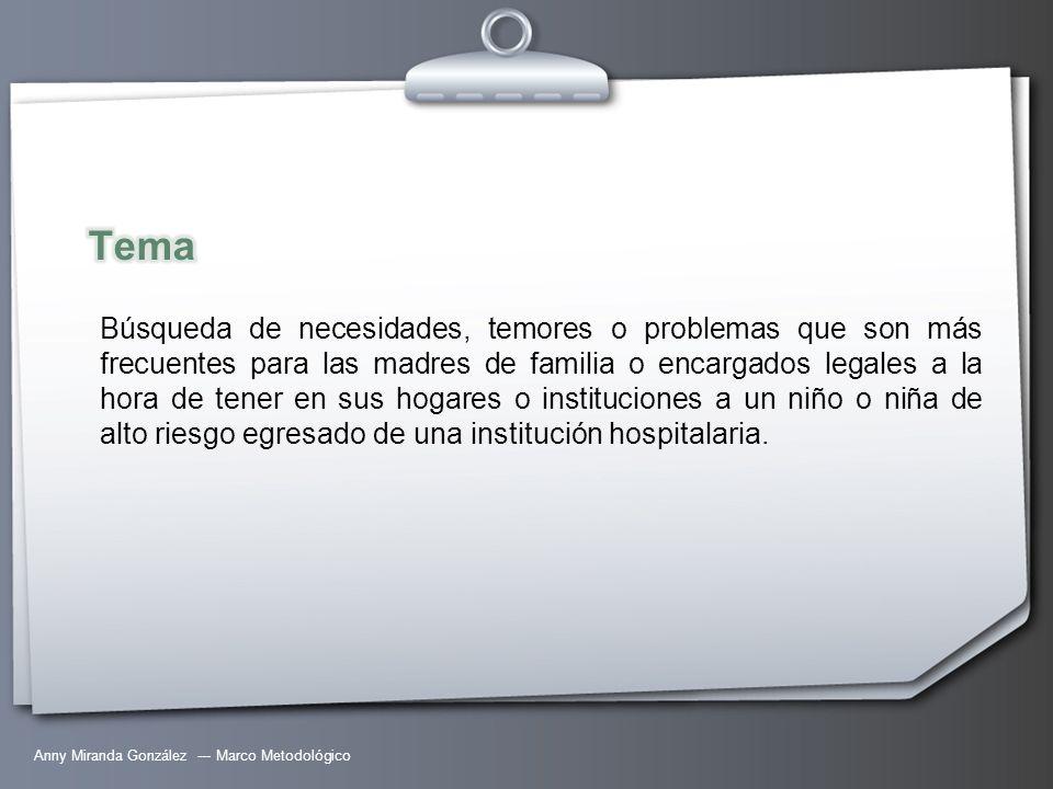 Anny Miranda González --- Marco Metodológico Búsqueda de necesidades, temores o problemas que son más frecuentes para las madres de familia o encargad