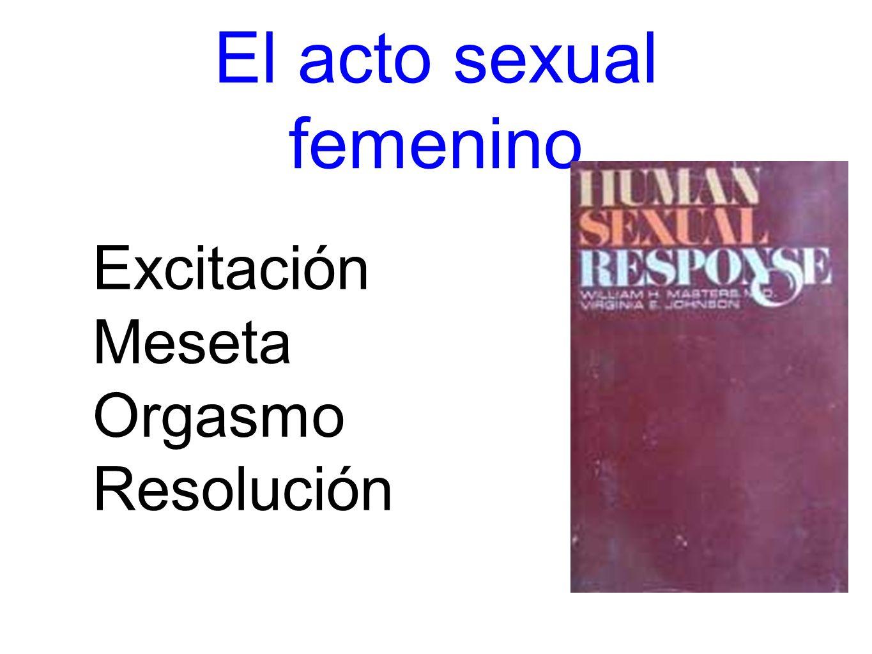 El acto sexual femenino Excitación Meseta Orgasmo Resolución