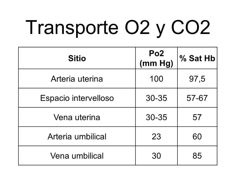Transporte O2 y CO2 Sitio Po2 (mm Hg) % Sat Hb Arteria uterina10097,5 Espacio intervelloso30-3557-67 Vena uterina30-3557 Arteria umbilical2360 Vena um