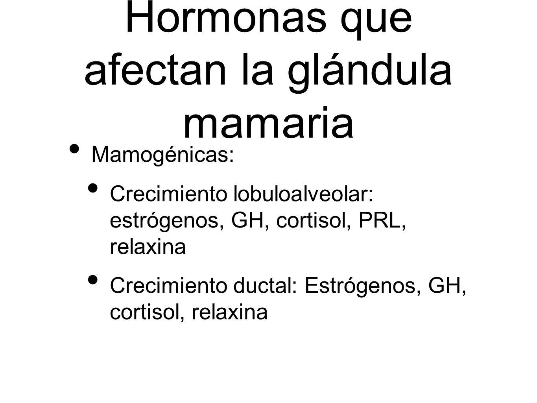Hormonas que afectan la glándula mamaria Mamogénicas: Crecimiento lobuloalveolar: estrógenos, GH, cortisol, PRL, relaxina Crecimiento ductal: Estrógen