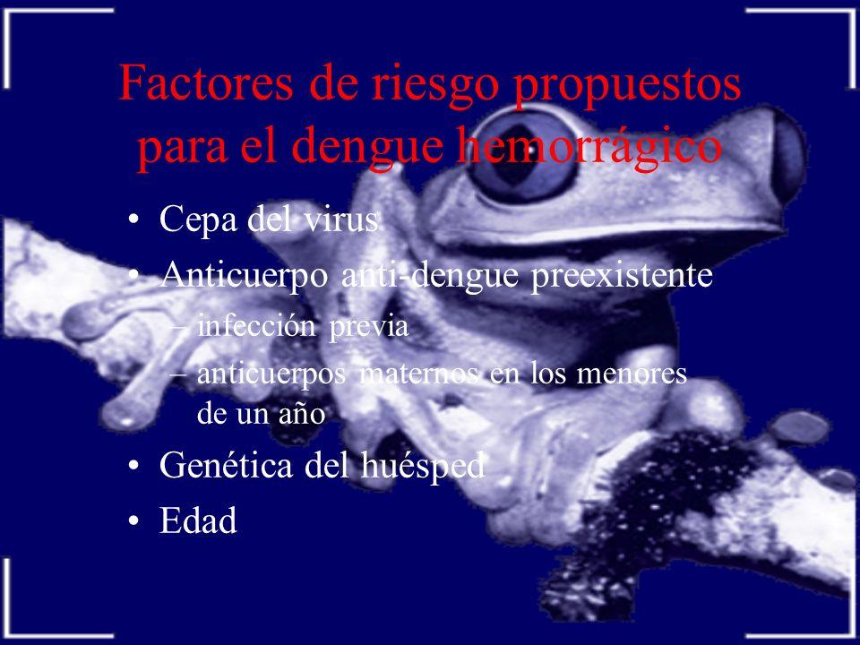 Factores de riesgo propuestos para el dengue hemorrágico Cepa del virus Anticuerpo anti-dengue preexistente –infección previa –anticuerpos maternos en