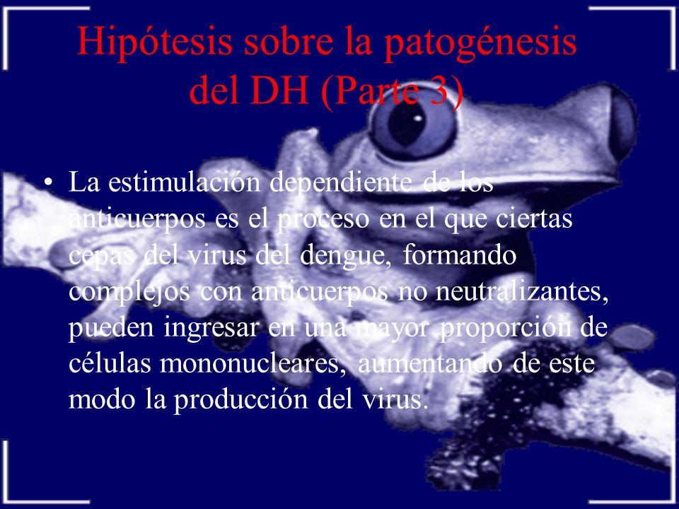 Hipótesis sobre la patogénesis del DH (Parte 3) La estimulación dependiente de los anticuerpos es el proceso en el que ciertas cepas del virus del den