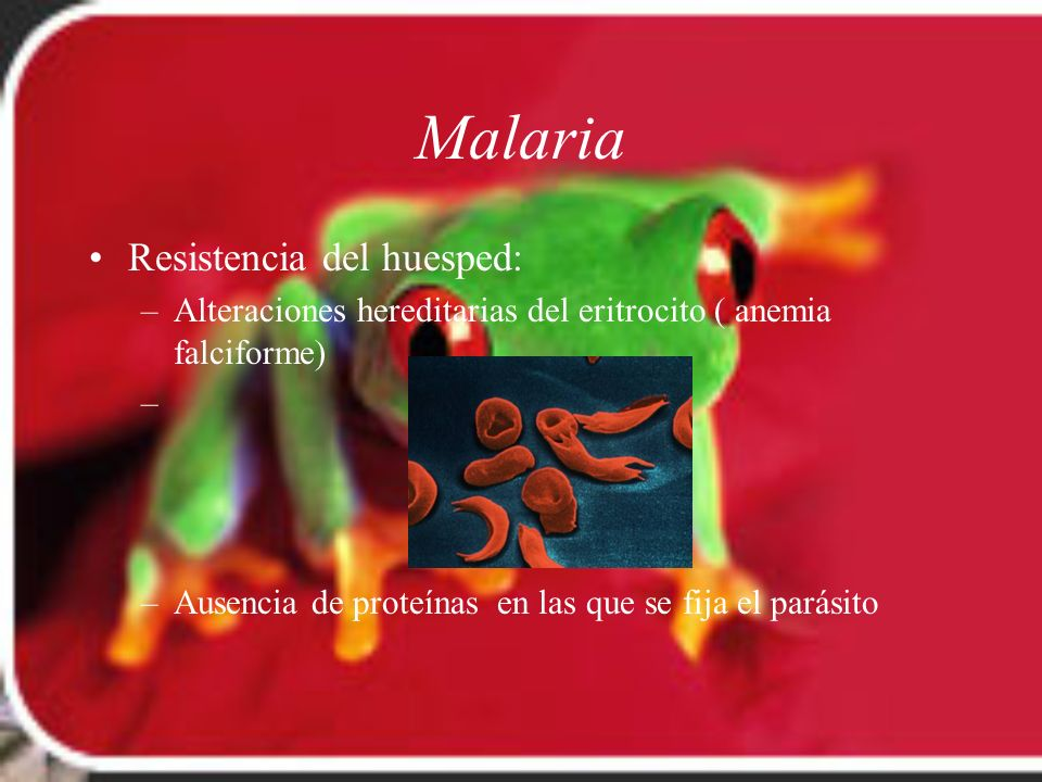 Malaria Resistencia del huesped: –Alteraciones hereditarias del eritrocito ( anemia falciforme) – –Ausencia de proteínas en las que se fija el parásit
