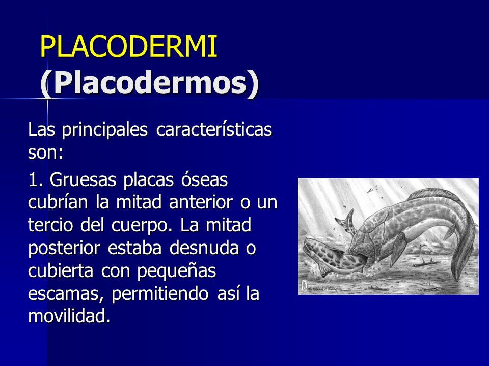 Class Placodermi