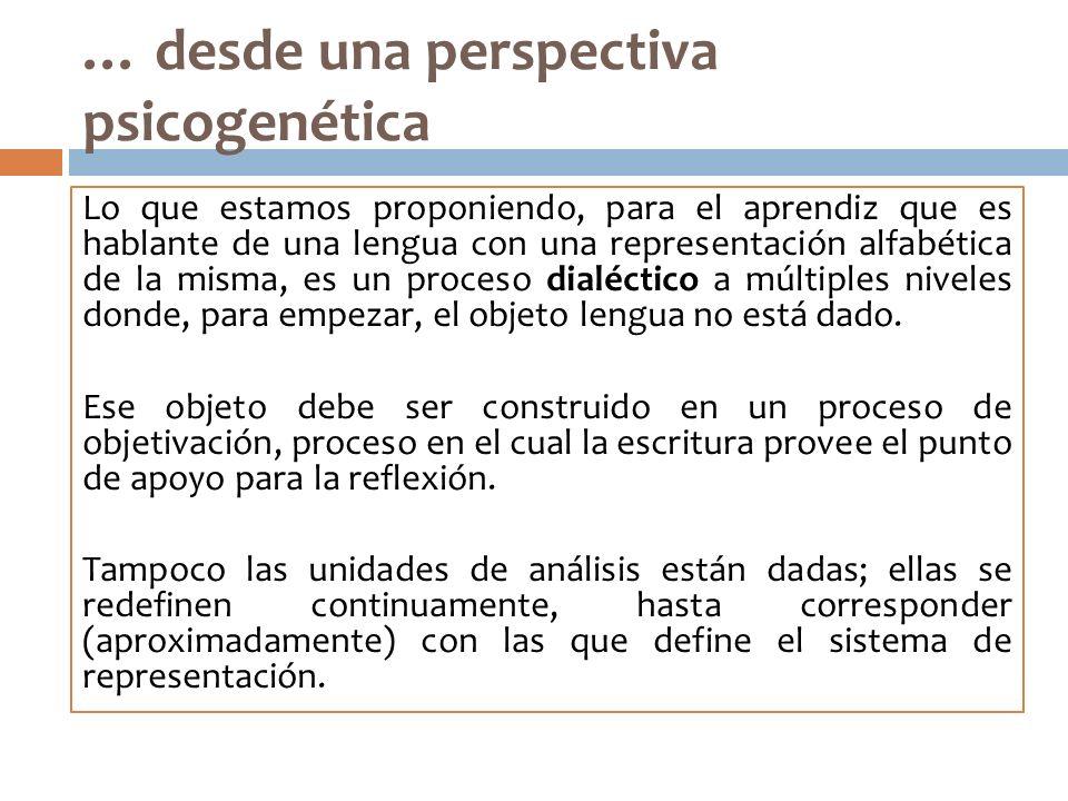 … desde una perspectiva psicogenética Lo que estamos proponiendo, para el aprendiz que es hablante de una lengua con una representación alfabética de