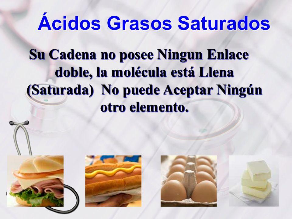 Ácidos Grasos Saturados Su Cadena no posee Ningun Enlace doble, la molécula está Llena (Saturada) No puede Aceptar Ningún otro elemento.