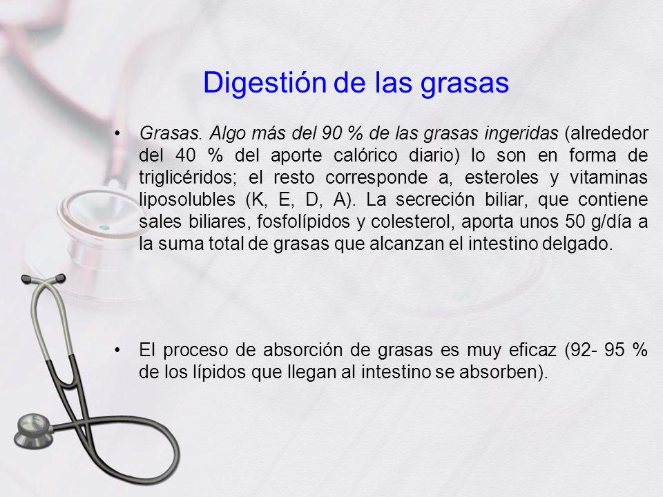 Digestión de las grasas Grasas. Algo más del 90 % de las grasas ingeridas (alrededor del 40 % del aporte calórico diario) lo son en forma de triglicér