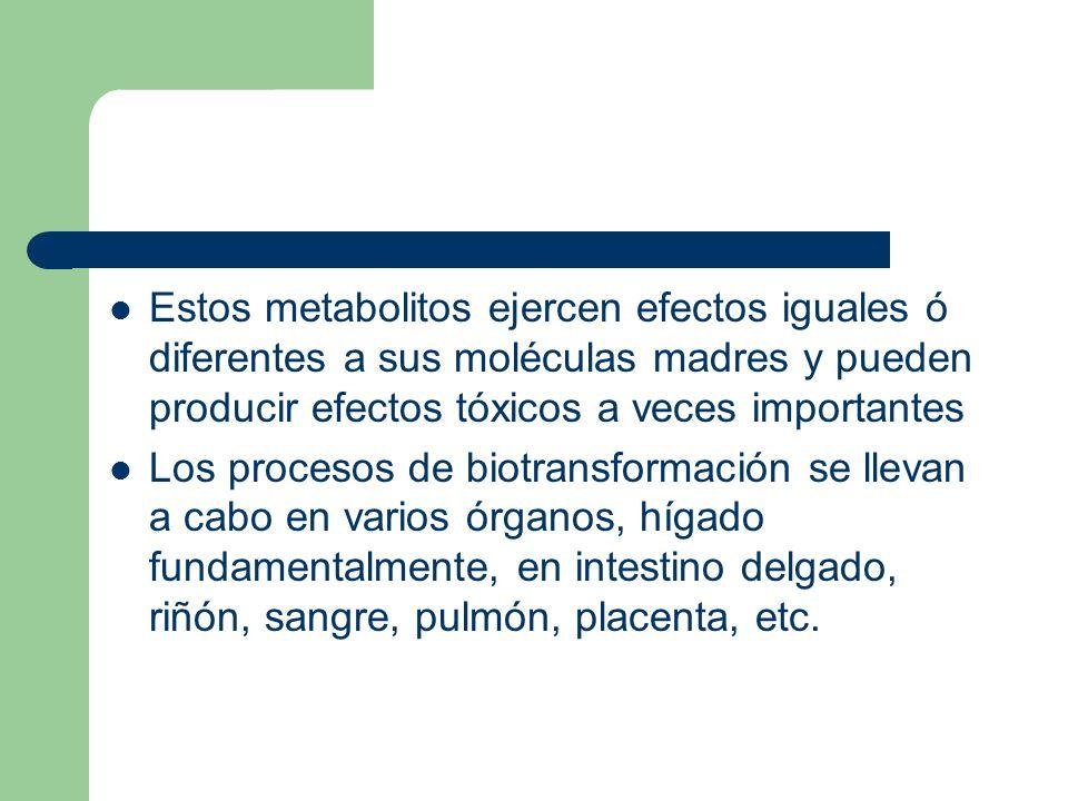 Estos metabolitos ejercen efectos iguales ó diferentes a sus moléculas madres y pueden producir efectos tóxicos a veces importantes Los procesos de bi