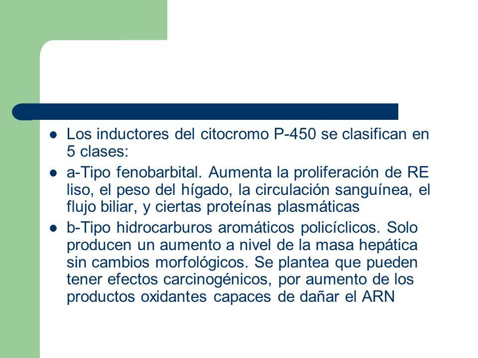 Los inductores del citocromo P-450 se clasifican en 5 clases: a-Tipo fenobarbital. Aumenta la proliferación de RE liso, el peso del hígado, la circula