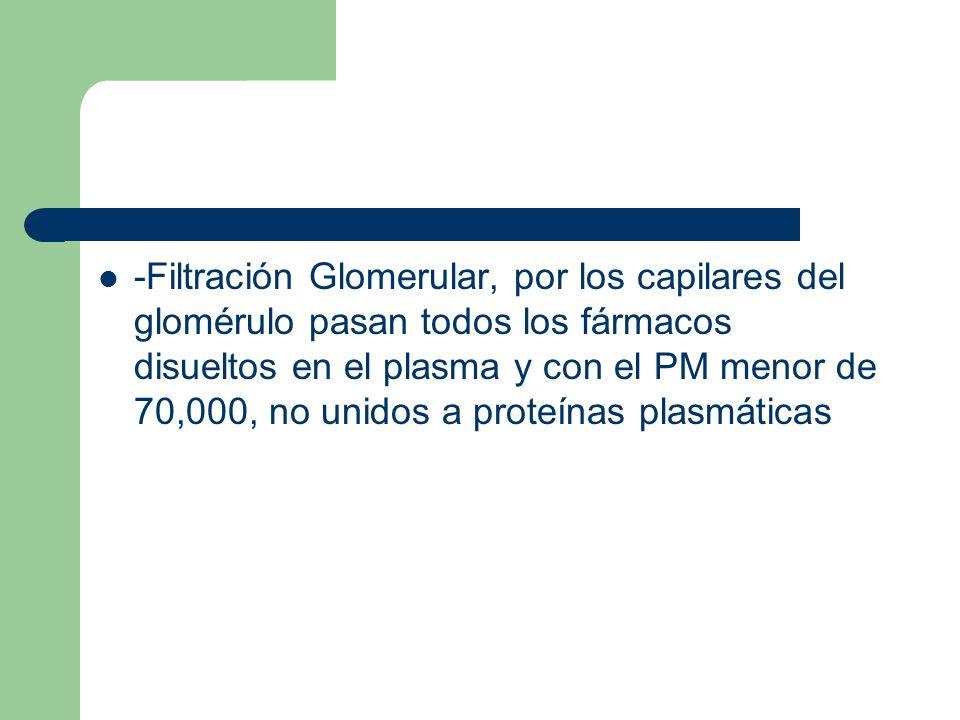 -Filtración Glomerular, por los capilares del glomérulo pasan todos los fármacos disueltos en el plasma y con el PM menor de 70,000, no unidos a prote