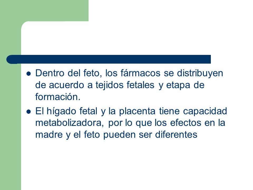 Dentro del feto, los fármacos se distribuyen de acuerdo a tejidos fetales y etapa de formación. El hígado fetal y la placenta tiene capacidad metaboli