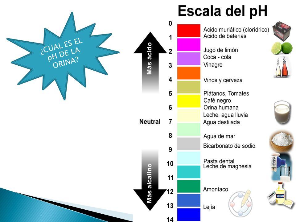 ¿CUAL ES EL pH DE LA ORINA?