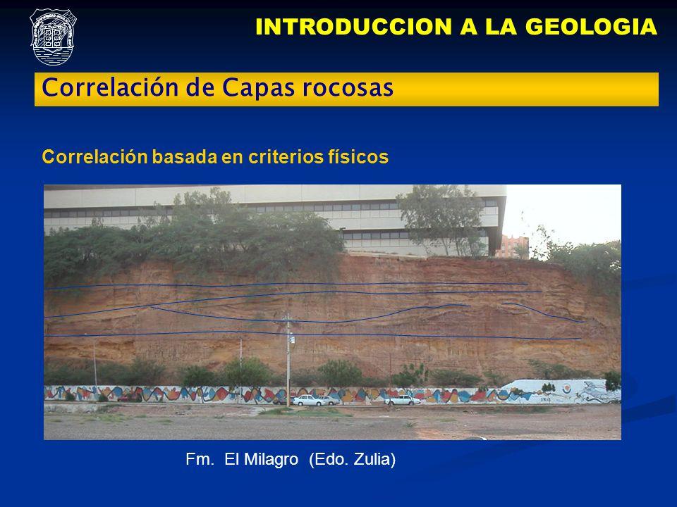 INTRODUCCION A LA GEOLOGIA Correlación de Capas rocosas Fm. El Milagro (Edo. Zulia) Correlación basada en criterios físicos