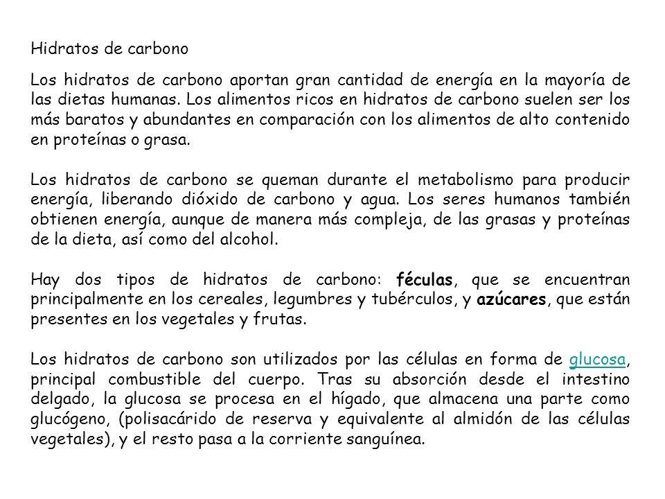 Hidratos de carbono Los hidratos de carbono aportan gran cantidad de energía en la mayoría de las dietas humanas. Los alimentos ricos en hidratos de c