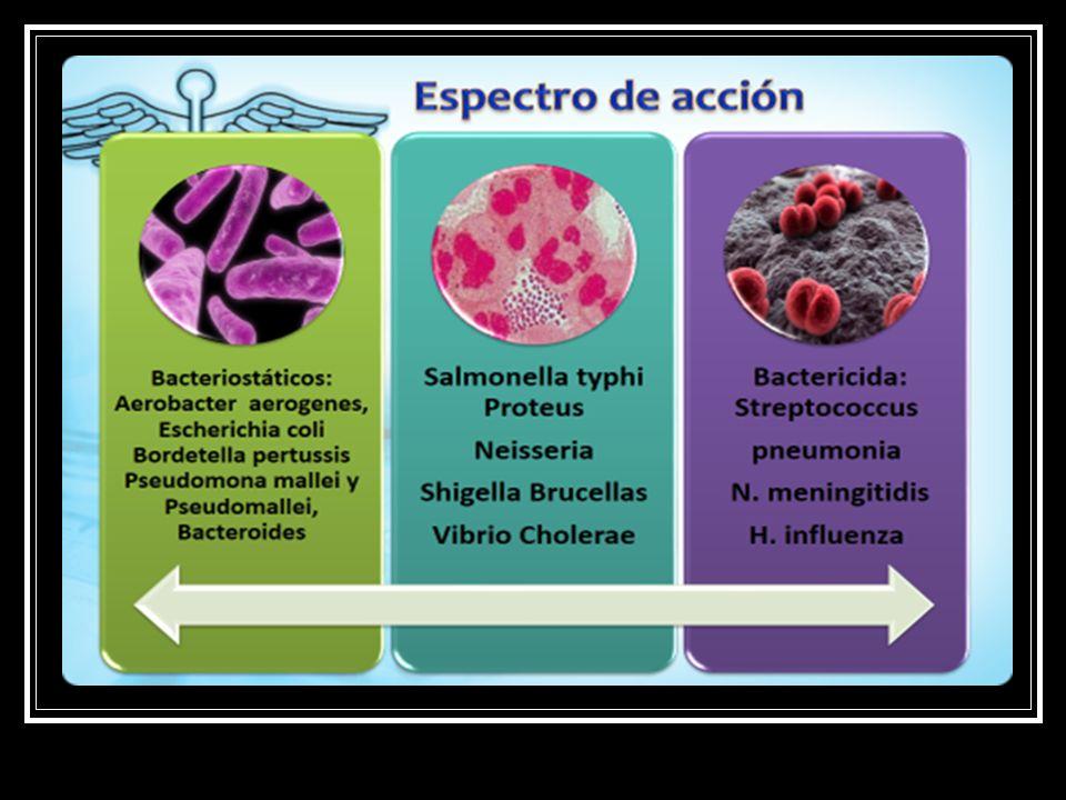 Ricketsias Chlamidias Mycoplasma Listeria Clostridium Leptospira Altas concent: Streptococos Stafilococos PROFILACTICO Y TERAPEUTICO
